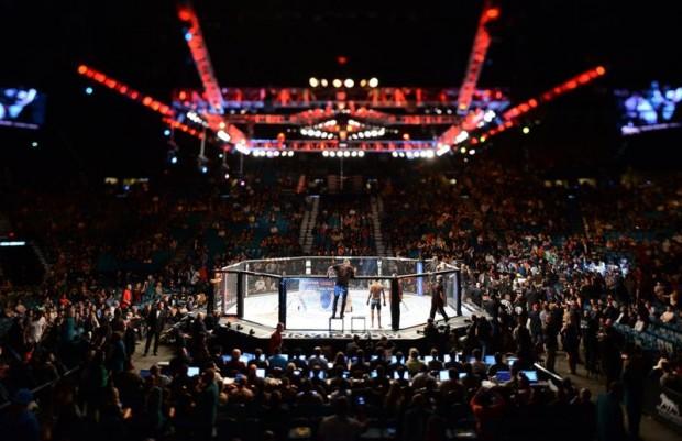 UFC anuncia seus primeiros eventos para 2017. Foto: Divulgação