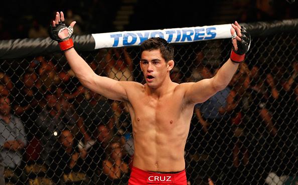 Cruz quer voltar a disputar o cinturão dos galos (Foto: Josh Hedges/UFC)