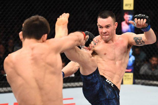 C. Covington provocou campeão (Foto: Reprodução Facebook UFC)