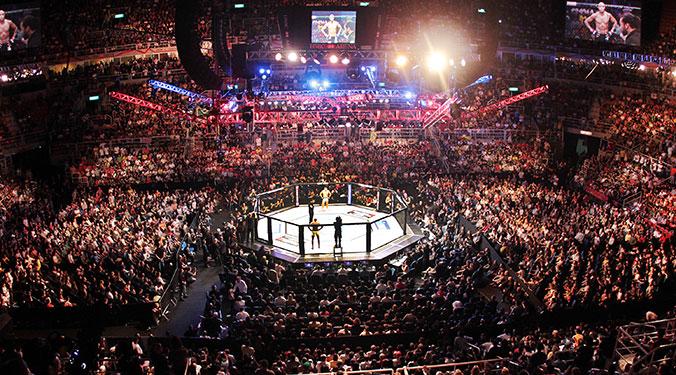 octogono_UFC_Publico