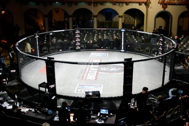 Bellator cage