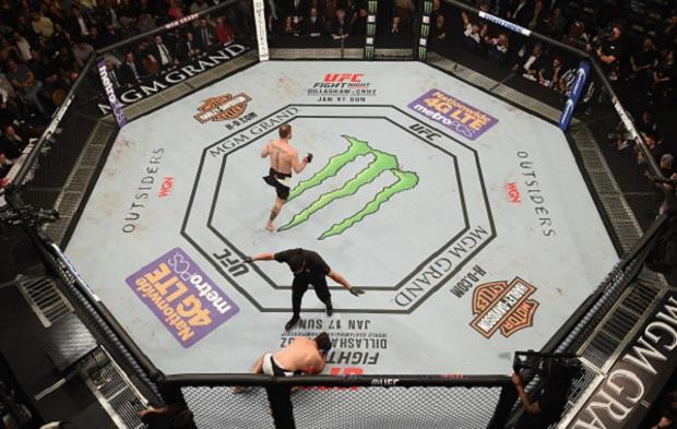 MMA segue banido na França. Foto: Josh Hedges/UFC