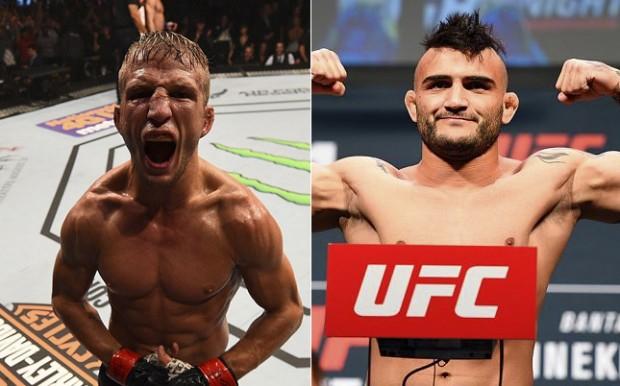 Dillashaw e Lineker devem se enfrentar no UFC 207. Foto: Produção SUPER LUTAS (Divulgação/UFC)