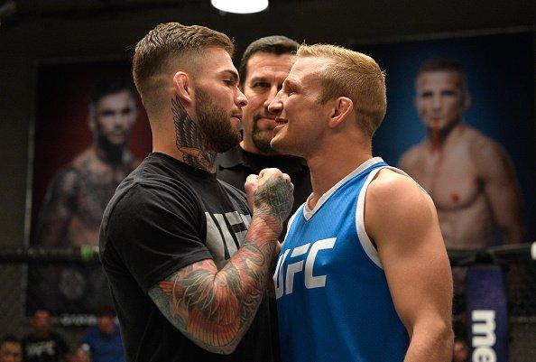 Garbrandt (esq) enfrenta Dillashaw (dir) no UFC 217 (Foto: Reprodução Twitter ufc_brasil)