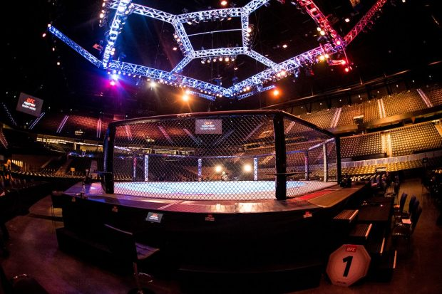 octogono-peq-Reproducao-Twitter-UFC